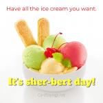 It's sher-bert day funny instagram birthday graphic